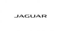 jaguar_99df826141_4208-b2c4b22839c9e3abc1e1656e4f934835.jpg